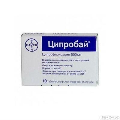 Cefminox renal dose ciprofloxacin