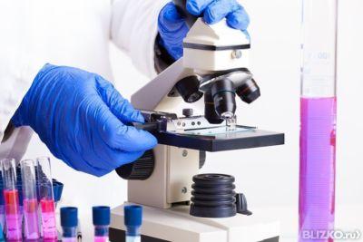 микроскопия на гонорею с окрашиванием