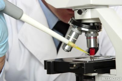 изучение гистологии образца